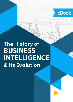 eBook - History of BI
